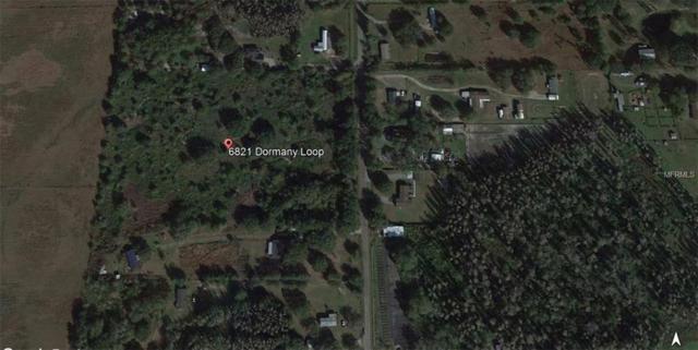 6821 Dormany Loop, Plant City, FL 33565 (MLS #T2913085) :: The Duncan Duo Team