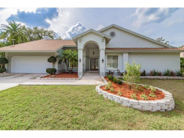 5410 Burchette Road, Tampa, FL 33647 (MLS #T2913504) :: Team Bohannon Keller Williams, Tampa Properties