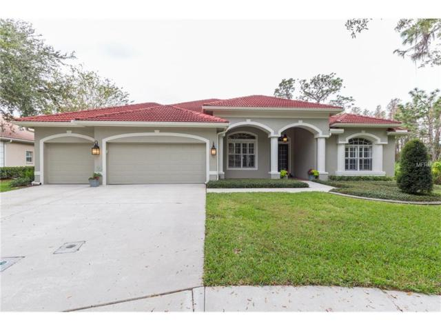 10101 Garden Retreat Ct, Tampa, FL 33647 (MLS #T2913539) :: Team Bohannon Keller Williams, Tampa Properties