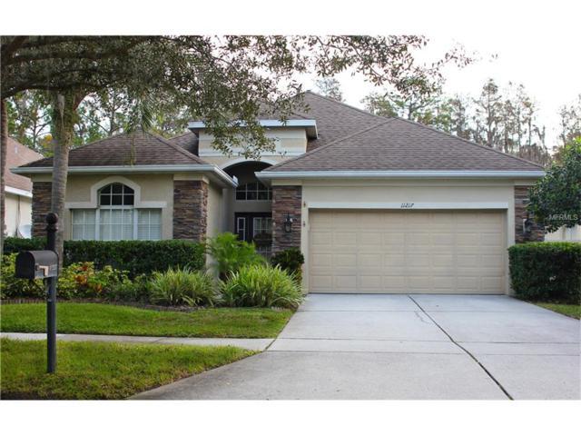 11217 Blacksmith Drive, Tampa, FL 33626 (MLS #T2914008) :: Cartwright Realty