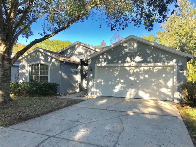 15126 Shaw Road, Tampa, FL 33625 (MLS #T2914570) :: Cartwright Realty