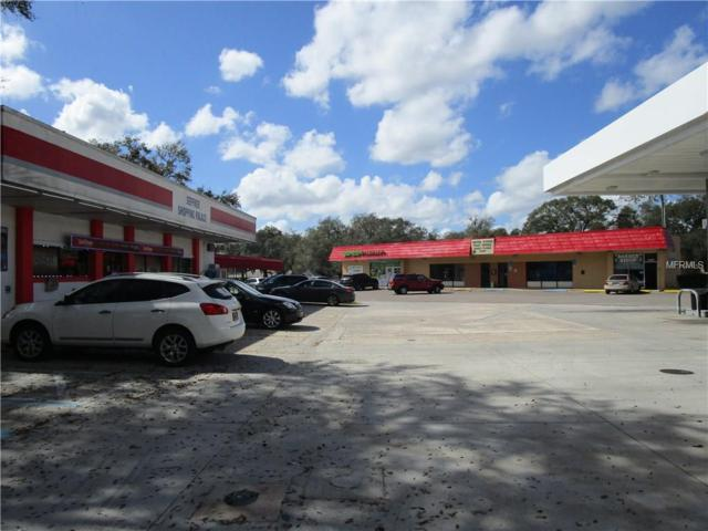 11511 E Dr Martin Luther King Jr Boulevard, Seffner, FL 33584 (MLS #T2914818) :: The Duncan Duo Team