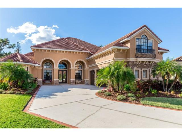 20002 Pergola Bend Lane, Tampa, FL 33647 (MLS #T2915105) :: Team Bohannon Keller Williams, Tampa Properties