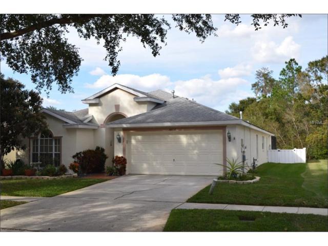 16832 Hawkridge Road, Lithia, FL 33547 (MLS #T2916696) :: Team Turk Real Estate