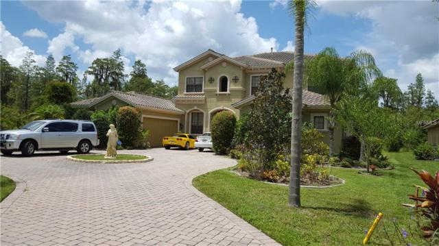 1515 Amarone Place, Lutz, FL 33548 (MLS #T2917142) :: The Duncan Duo Team
