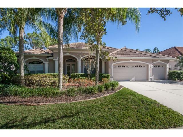 10246 Waterside Oaks Drive, Tampa, FL 33647 (MLS #T2917736) :: Team Bohannon Keller Williams, Tampa Properties
