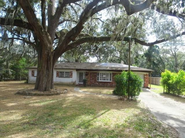 211 James Street, Brandon, FL 33510 (MLS #T2918483) :: Arruda Family Real Estate Team