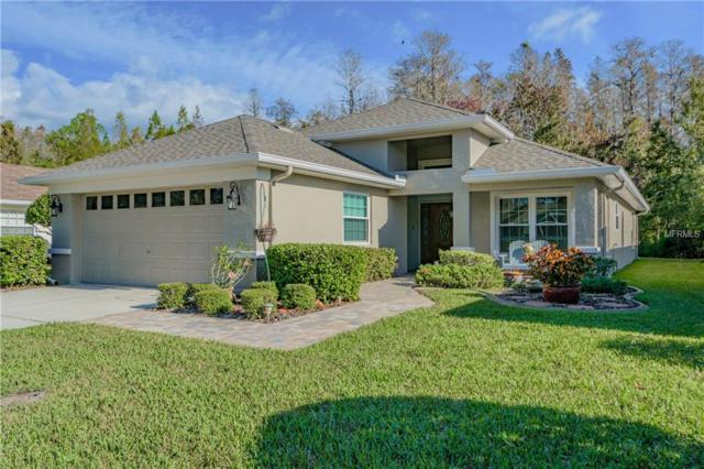 1712 Orchardgrove Avenue, New Port Richey, FL 34655 (MLS #T2918544) :: The Duncan Duo Team
