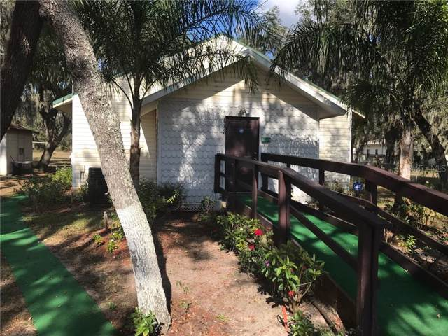 15132 Dr Martin Luther King Jr Boulevard, Dover, FL 33527 (MLS #T2919158) :: Rabell Realty Group