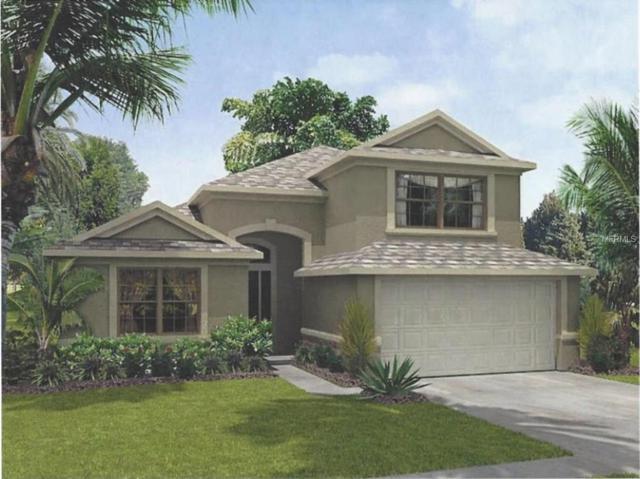 0 21ST Avenue SE Lot 2, Ruskin, FL 33570 (MLS #T2922219) :: Griffin Group