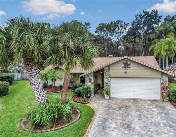 11916 Steppingstone Boulevard, Tampa, FL 33635 (MLS #T2922485) :: Team Bohannon Keller Williams, Tampa Properties
