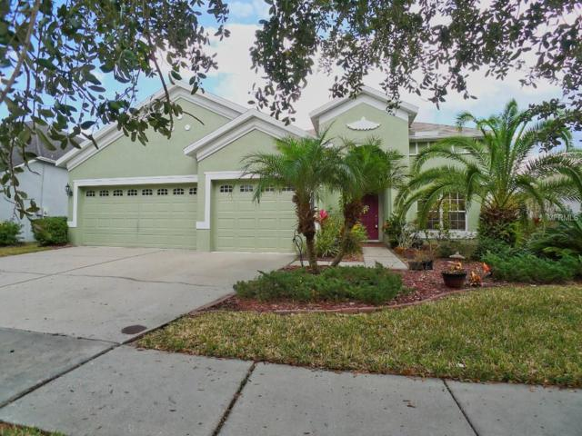 20415 Walnut Grove Lane, Tampa, FL 33647 (MLS #T2922733) :: Team Bohannon Keller Williams, Tampa Properties