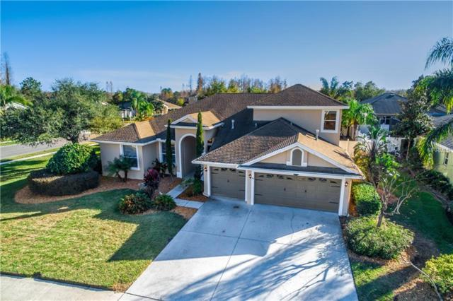 16556 Ivy Lake Drive, Odessa, FL 33556 (MLS #T2923269) :: Griffin Group