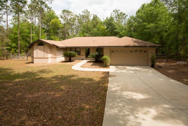 12055 S Canna Point, Floral City, FL 34436 (MLS #T2924378) :: The Duncan Duo Team