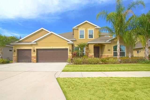 19326 Yellow Clover Drive, Tampa, FL 33647 (MLS #T2924738) :: Team Bohannon Keller Williams, Tampa Properties