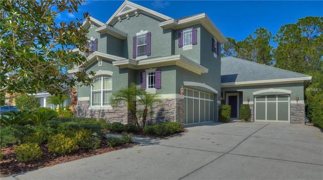11917 Meridian Point Drive, Tampa, FL 33626 (MLS #T2925900) :: Medway Realty