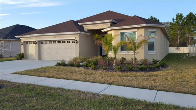 27129 Sora Boulevard, Wesley Chapel, FL 33544 (MLS #T2926677) :: The Duncan Duo Team