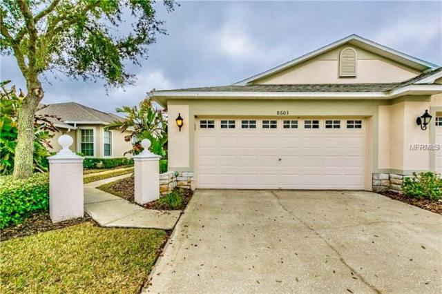 8603 Egret Point Court, Tampa, FL 33647 (MLS #T2927257) :: The Duncan Duo Team