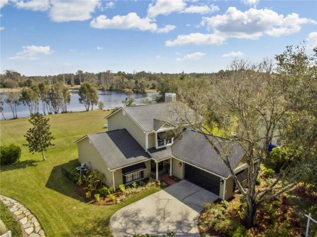 3119 Lakestone Drive, Tampa, FL 33618 (MLS #T2928965) :: Cartwright Realty