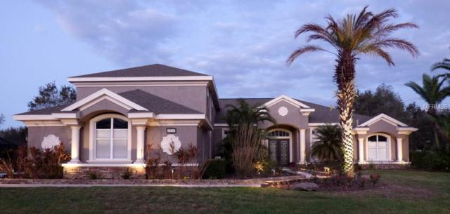 6046 Audubon Manor Boulevard, Lithia, FL 33547 (MLS #T2929452) :: Team Turk Real Estate