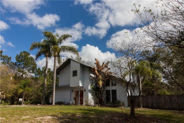 19625 Pine Tree Road, Odessa, FL 33556 (MLS #T2930771) :: Team Bohannon Keller Williams, Tampa Properties