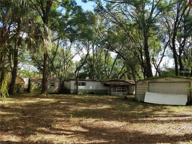 9608 Rockglen Drive, Thonotosassa, FL 33592 (MLS #T2932232) :: The Duncan Duo Team