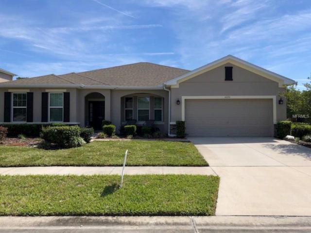 6020 Evansbrook Drive, Zephyrhills, FL 33541 (MLS #T2932443) :: Griffin Group
