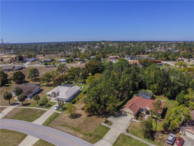 13393 Lawrence Street, Spring Hill, FL 34609 (MLS #T2933709) :: G World Properties