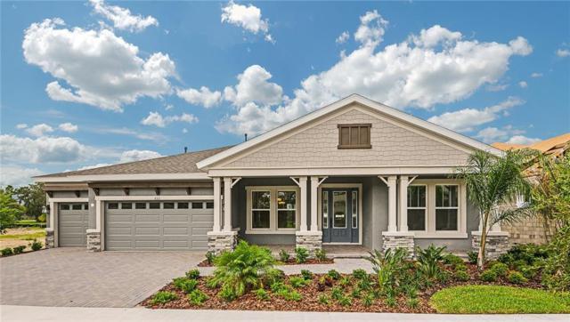 6311 Knob Tree Drive, Lithia, FL 33547 (MLS #T2935419) :: The Duncan Duo Team