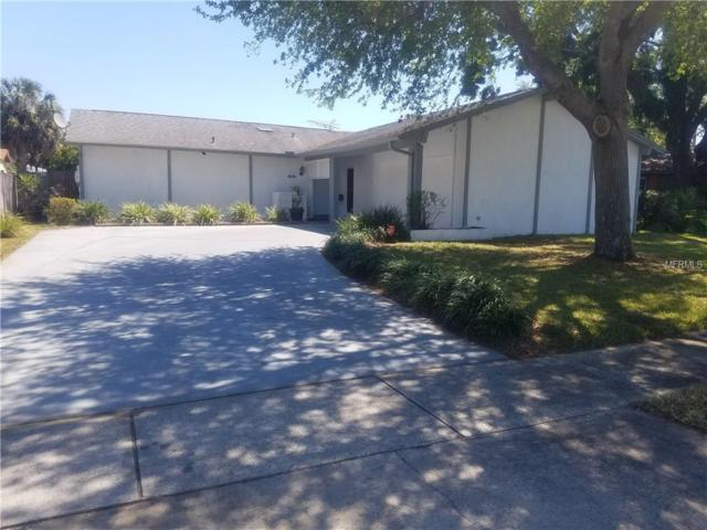 8404 Woodapple Court, Tampa, FL 33615 (MLS #T2936485) :: BCA Realty