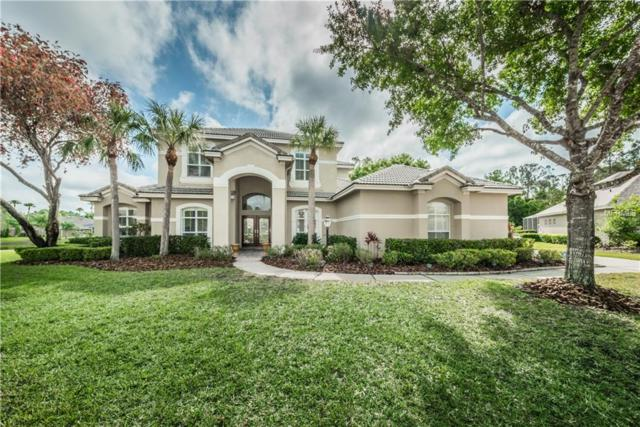 12306 Marblehead Drive, Tampa, FL 33626 (MLS #T2937191) :: The Duncan Duo Team