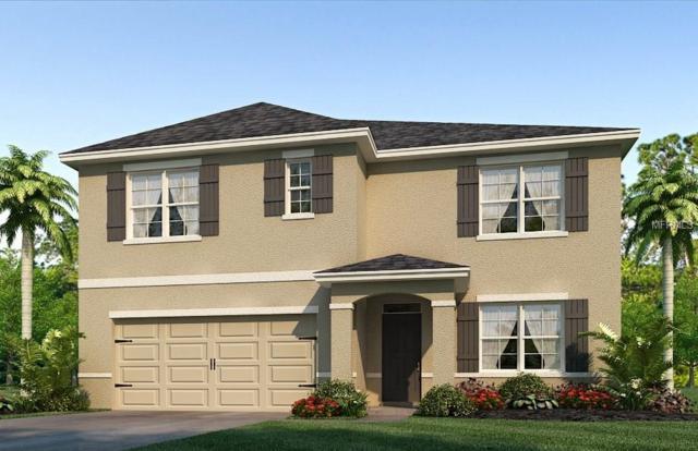 9521 Sunstone Boulevard, Thonotosassa, FL 33592 (MLS #T2937225) :: G World Properties
