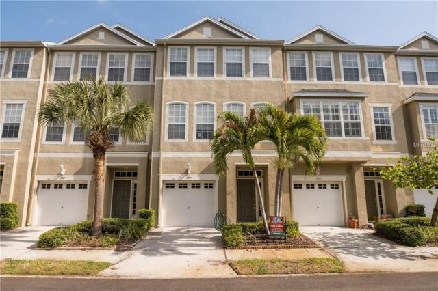2915 Pointeview Drive, Tampa, FL 33611 (MLS #T2937478) :: The Duncan Duo Team