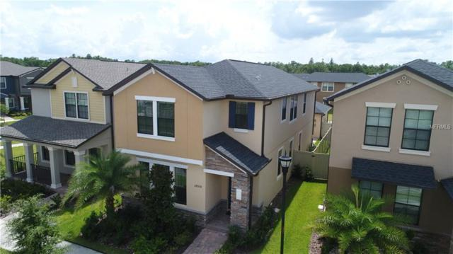 28530 Pleasant Bay Loop, Wesley Chapel, FL 33543 (MLS #T2938552) :: The Duncan Duo Team