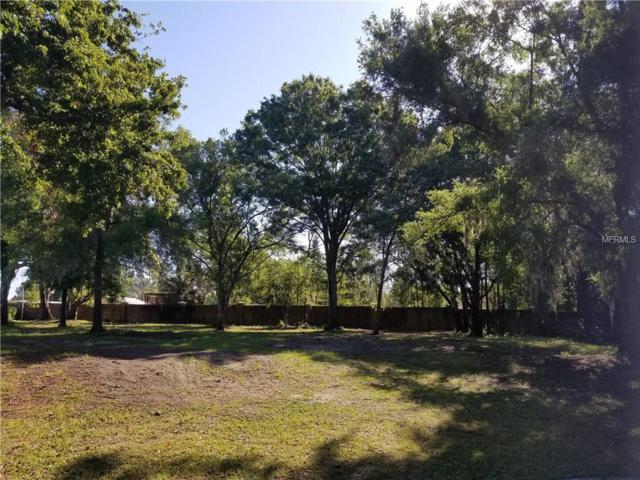 29551 Chapel Park Drive, Wesley Chapel, FL 33543 (MLS #T2938902) :: Team Pepka