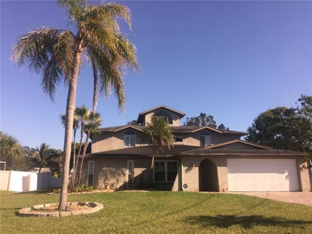 1910 Gulfview Drive, Holiday, FL 34691 (MLS #T2939076) :: The Duncan Duo Team
