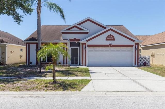 9021 Sheldon Chase Drive, Tampa, FL 33635 (MLS #T3100519) :: The Duncan Duo Team