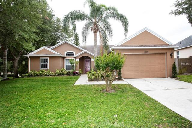 Address Not Published, Ocoee, FL 34761 (MLS #T3101188) :: RE/MAX Realtec Group