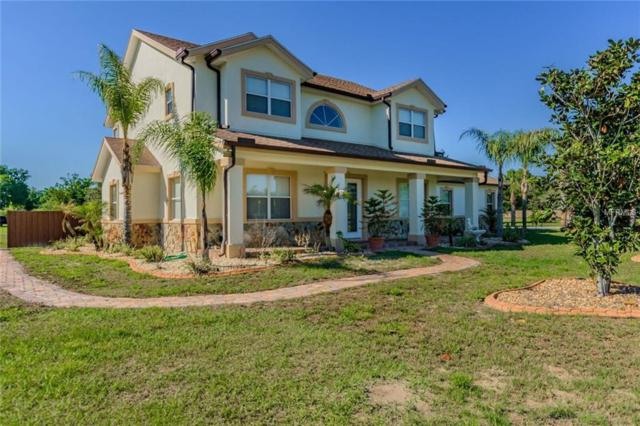 8153 Ehren Cutoff, Land O Lakes, FL 34639 (MLS #T3101628) :: KELLER WILLIAMS CLASSIC VI