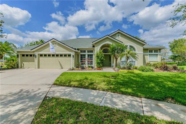 19211 Pristine Place, Lutz, FL 33558 (MLS #T3102168) :: Team Bohannon Keller Williams, Tampa Properties