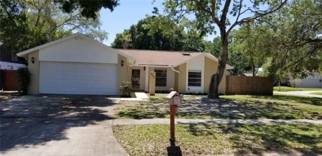4720 Deerwalk Avenue, Tampa, FL 33624 (MLS #T3102293) :: Revolution Real Estate