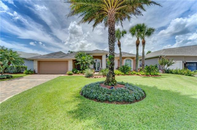 4312 Beau Rivage Circle, Lutz, FL 33558 (MLS #T3102630) :: The Duncan Duo Team
