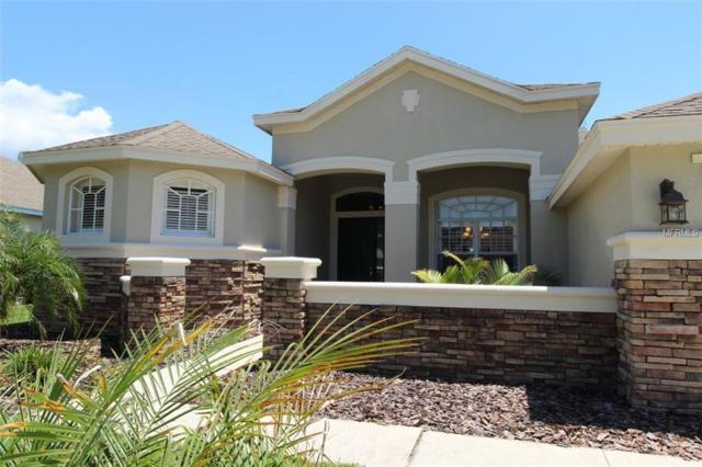 15715 Ibisridge Drive, Lithia, FL 33547 (MLS #T3103331) :: The Duncan Duo Team
