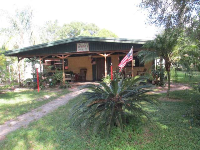 5138 Seaberg Road, Zephyrhills, FL 33541 (MLS #T3103655) :: The Duncan Duo Team