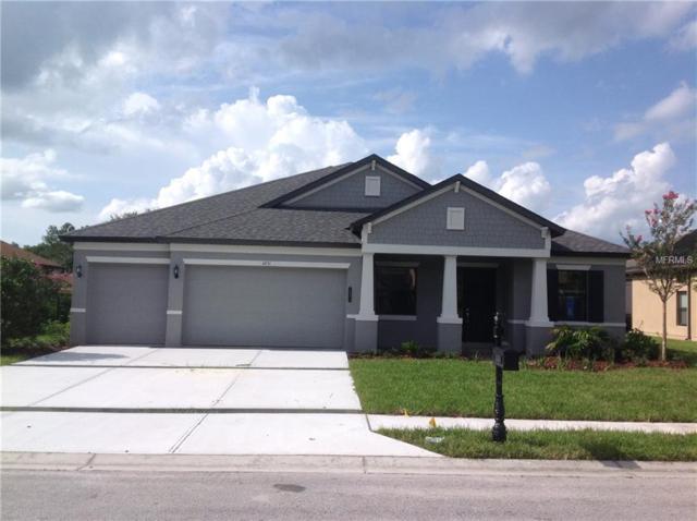 4931 Lago Vista Circle, Land O Lakes, FL 34639 (MLS #T3103696) :: Delgado Home Team at Keller Williams