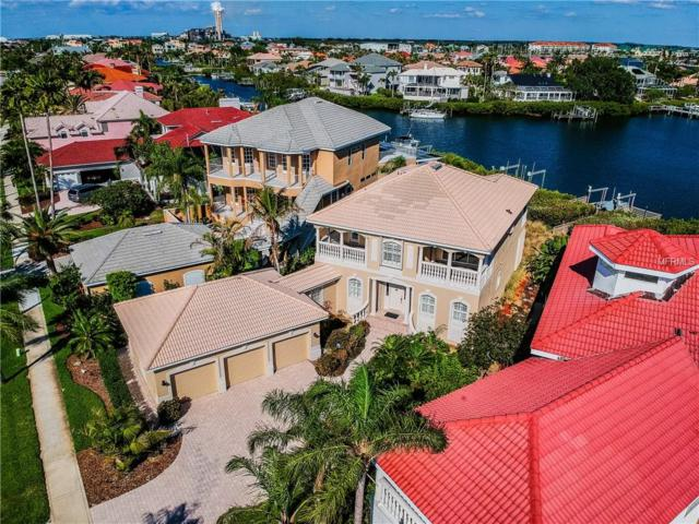6207 Marbella Boulevard, Apollo Beach, FL 33572 (MLS #T3104051) :: Zarghami Group