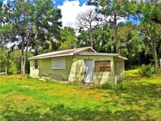 12915 Mohican Avenue, New Port Richey, FL 34654 (MLS #T3104163) :: Team Pepka