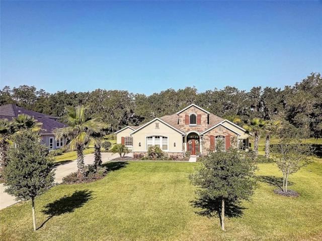3213 Cordoba Ranch Boulevard, Lutz, FL 33559 (MLS #T3104744) :: The Duncan Duo Team