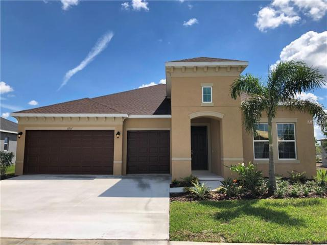 11737 Sunburst Marble Drive, Riverview, FL 33579 (MLS #T3105453) :: The Duncan Duo Team