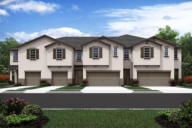 17849 Althea Blue Place #101, Lutz, FL 33558 (MLS #T3105581) :: The Duncan Duo Team